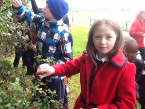 Mary-Nora helping to gather berries and leaves for the Nature/Science table